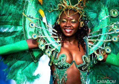 organisateur-de-music-hall-cabarets-et-revues-samba
