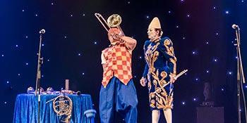 Organisation de spectacles de cirque