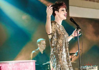 organisateur-spectacles-concerts-chanteurs