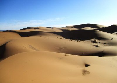 voyage-organise-desert