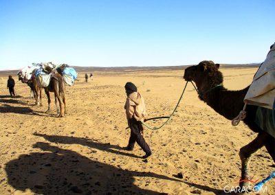 voyage-organise-desert-balade-2