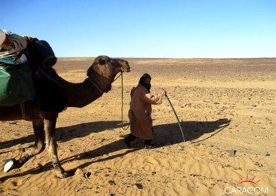voyage-organise-desert-decouverte