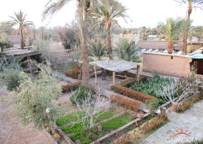 voyage-organise-desert-decouverte-culture