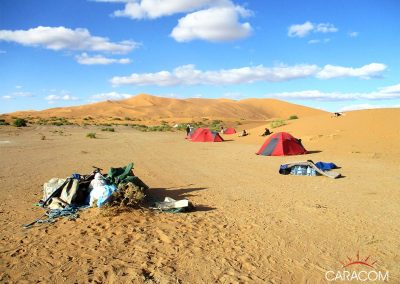 voyage-organise-desert-safari
